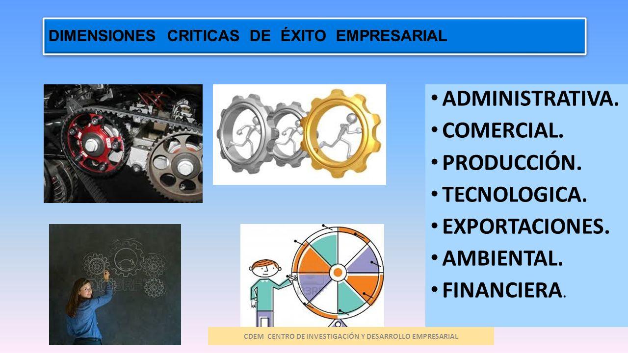 DIMENSIONES CRITICAS DE ÉXITO EMPRESARIAL