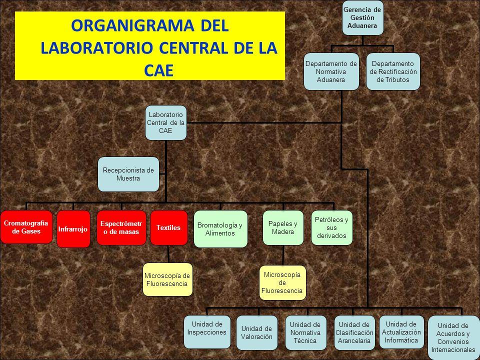 ORGANIGRAMA DEL LABORATORIO CENTRAL DE LA CAE