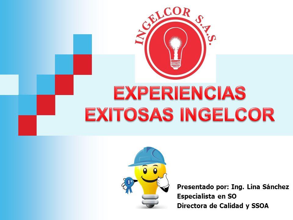 EXPERIENCIAS EXITOSAS INGELCOR