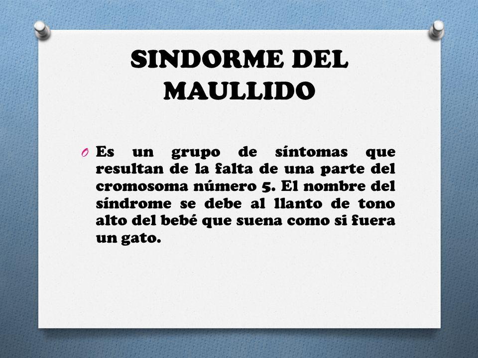 SINDORME DEL MAULLIDO