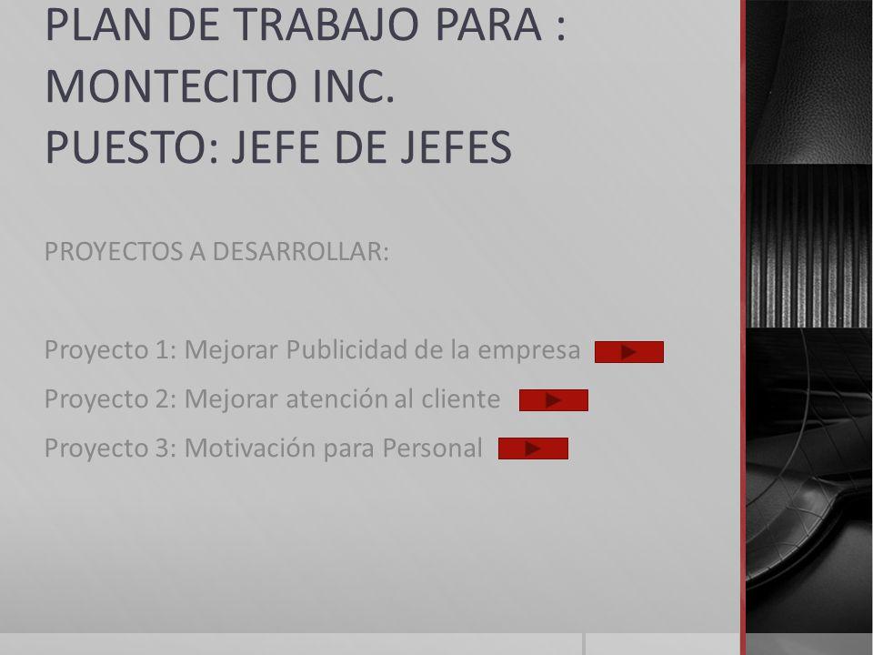 PLAN DE TRABAJO PARA : MONTECITO INC. PUESTO: JEFE DE JEFES