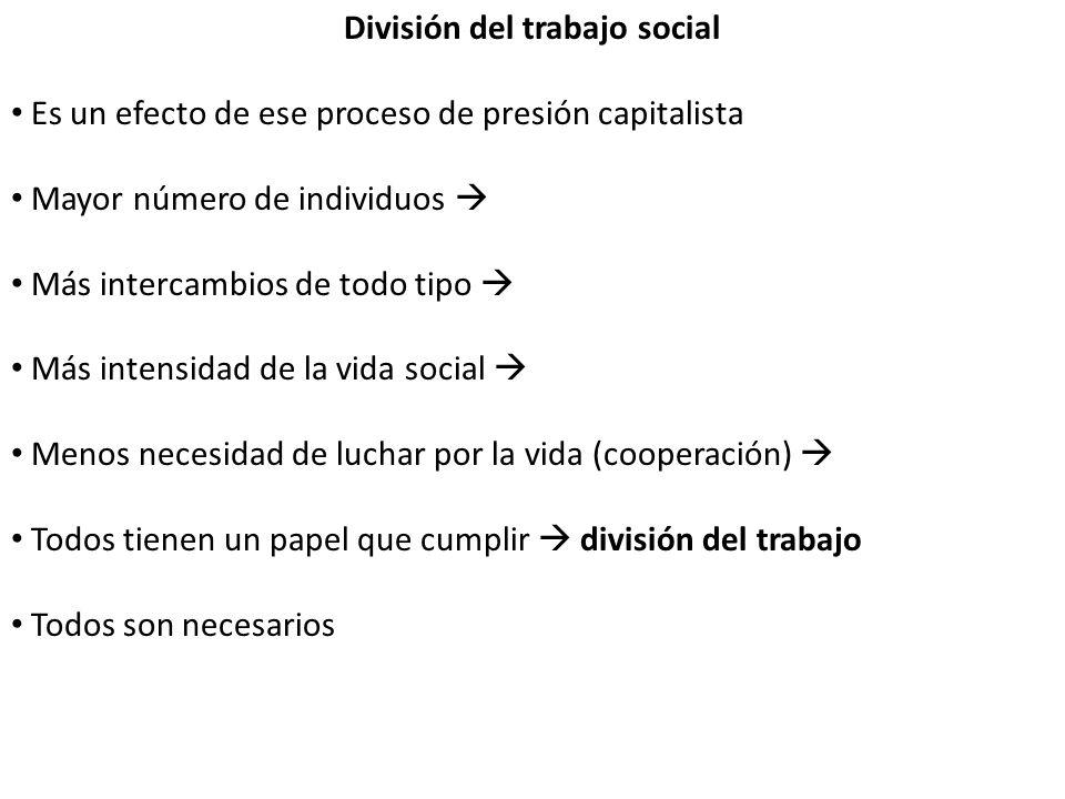 División del trabajo social