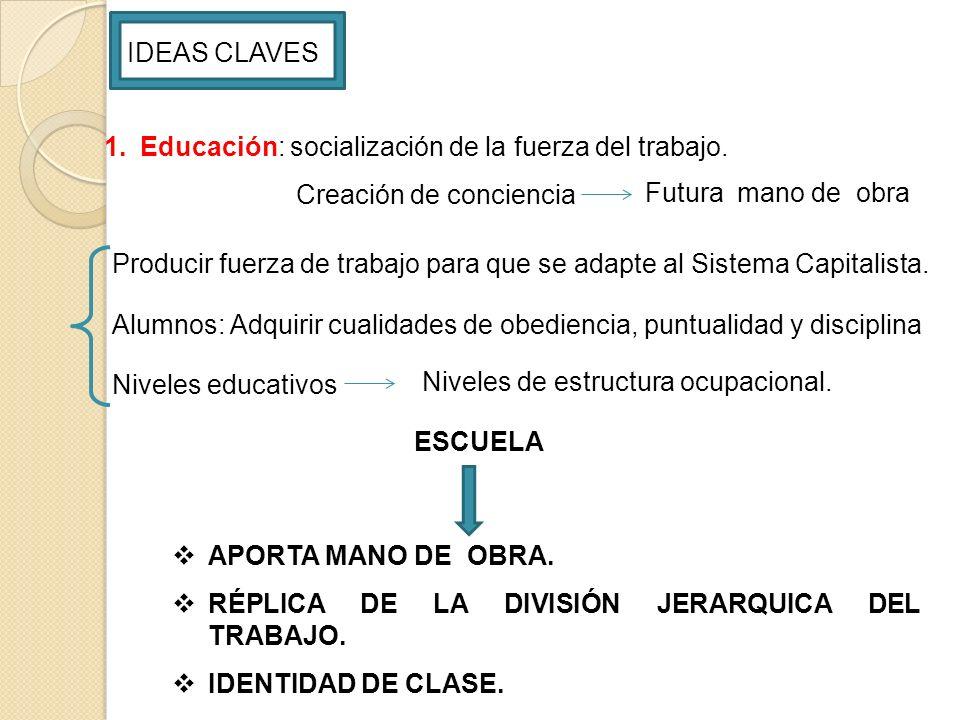 IDEAS CLAVES Educación: socialización de la fuerza del trabajo. Creación de conciencia. Futura mano de obra.