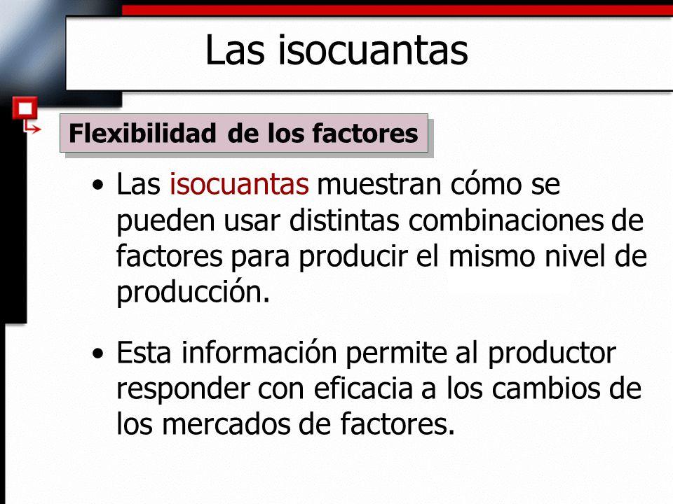 Flexibilidad de los factores