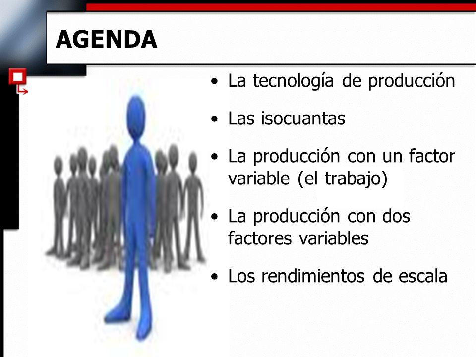 AGENDA La tecnología de producción Las isocuantas