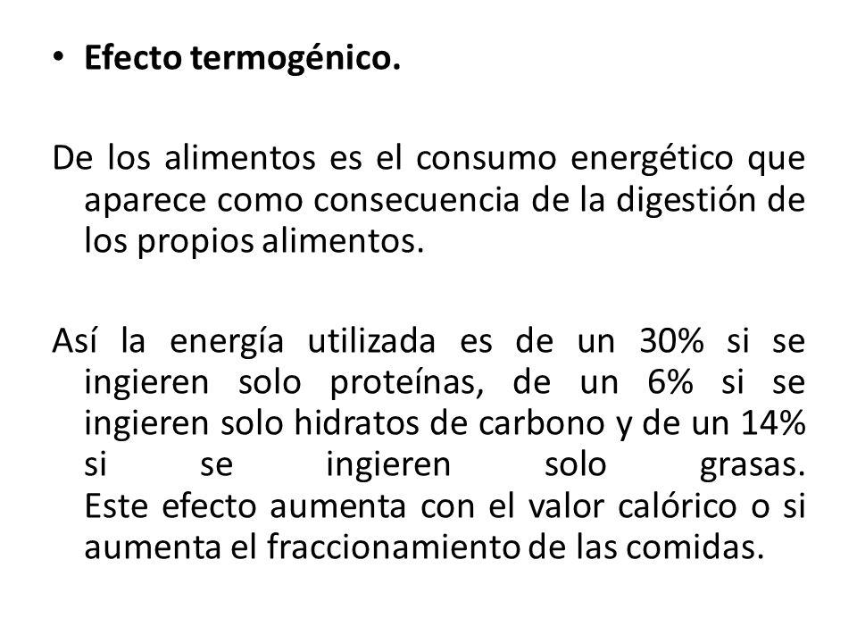 Efecto termogénico. De los alimentos es el consumo energético que aparece como consecuencia de la digestión de los propios alimentos.