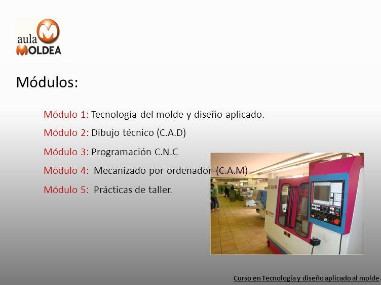 Módulos: Módulo 1: Tecnología del molde y diseño aplicado.