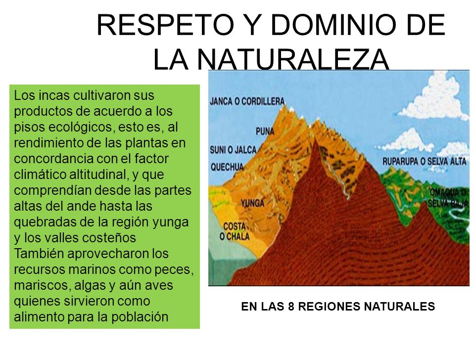 RESPETO Y DOMINIO DE LA NATURALEZA