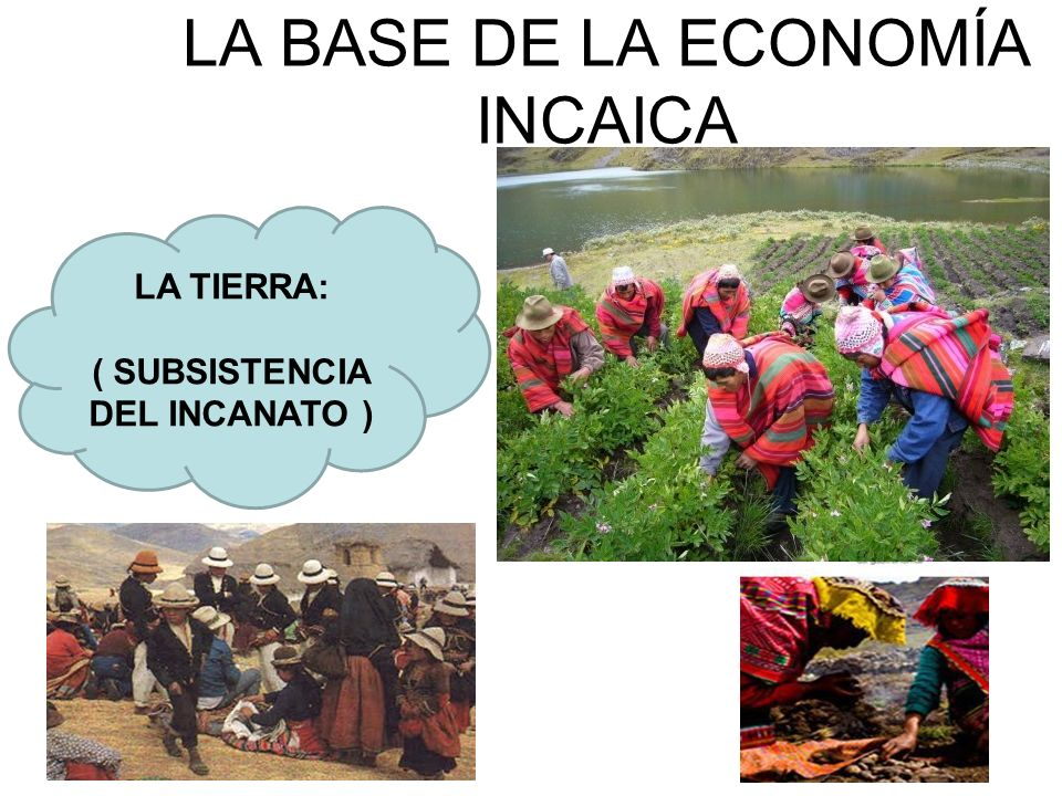 LA BASE DE LA ECONOMÍA INCAICA