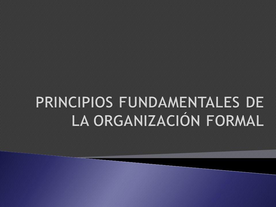 PRINCIPIOS FUNDAMENTALES DE LA ORGANIZACIÓN FORMAL