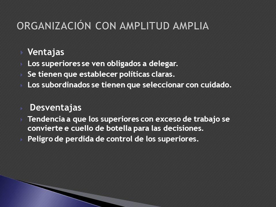 ORGANIZACIÓN CON AMPLITUD AMPLIA
