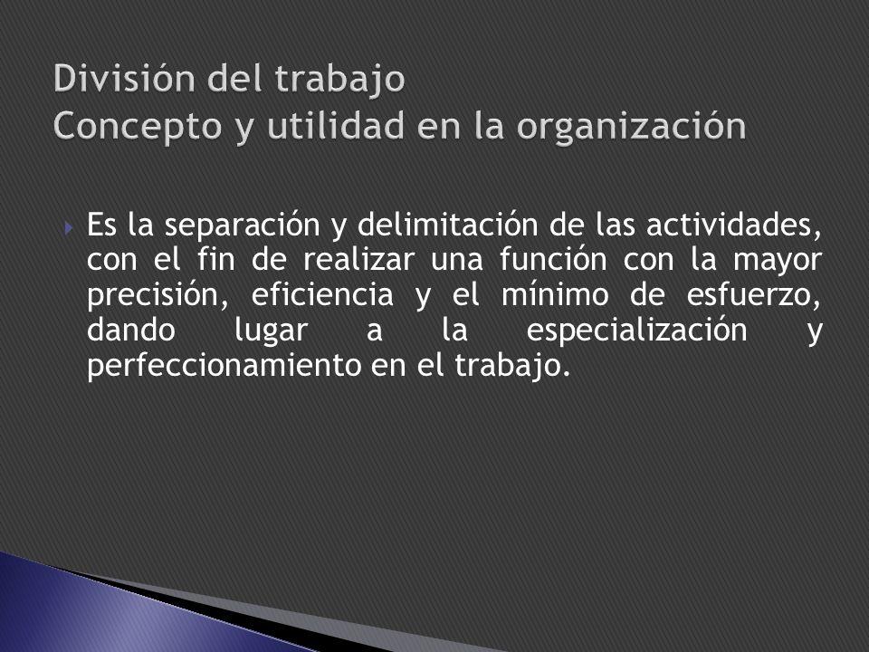 División del trabajo Concepto y utilidad en la organización