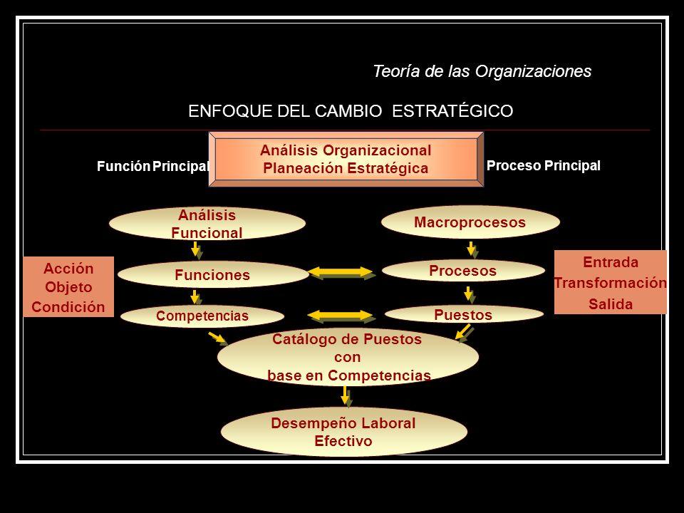 Catálogo de Puestos con Análisis Organizacional Planeación Estratégica