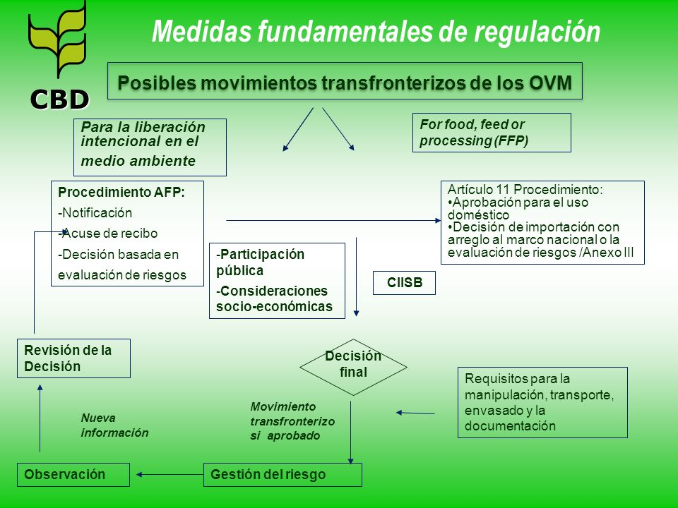Medidas fundamentales de regulación