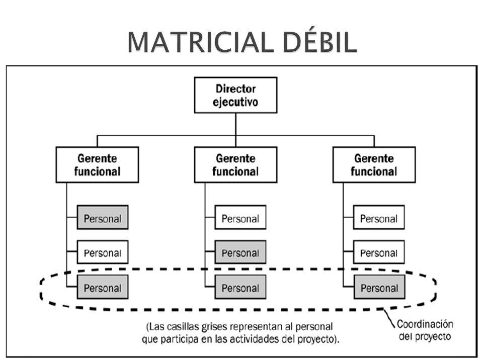 MATRICIAL DÉBIL