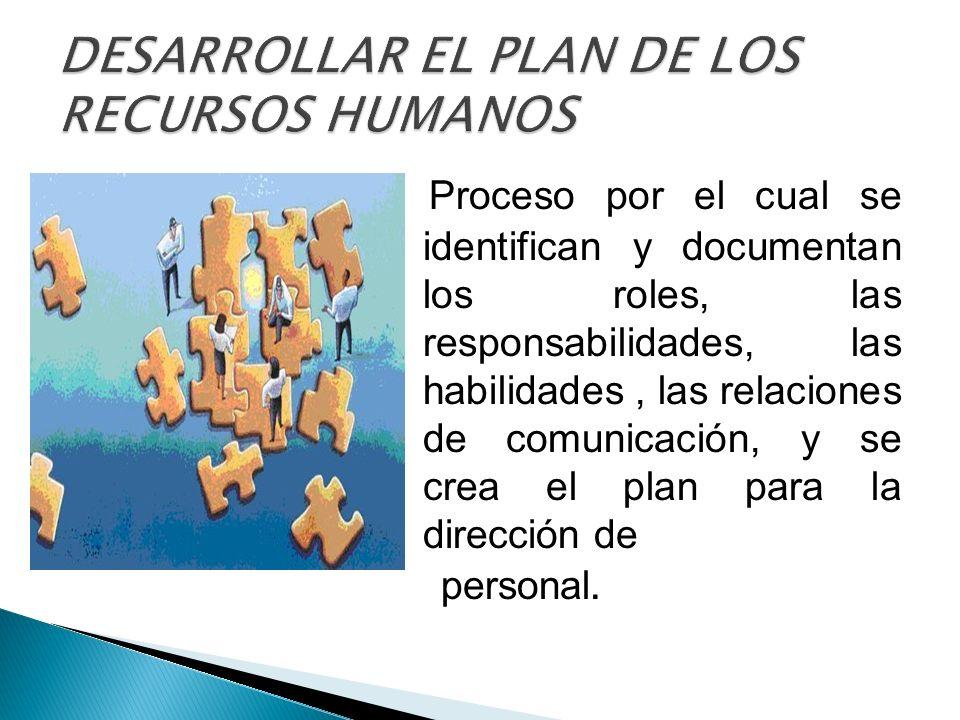 DESARROLLAR EL PLAN DE LOS RECURSOS HUMANOS