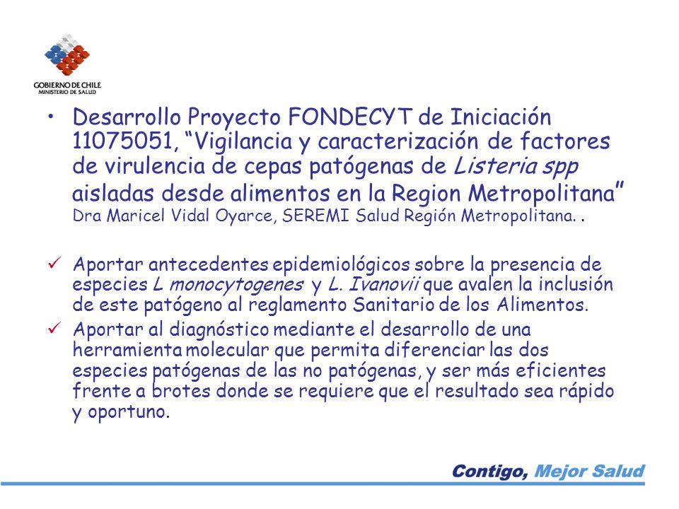 Desarrollo Proyecto FONDECYT de Iniciación 11075051, Vigilancia y caracterización de factores de virulencia de cepas patógenas de Listeria spp aisladas desde alimentos en la Region Metropolitana Dra Maricel Vidal Oyarce, SEREMI Salud Región Metropolitana. .