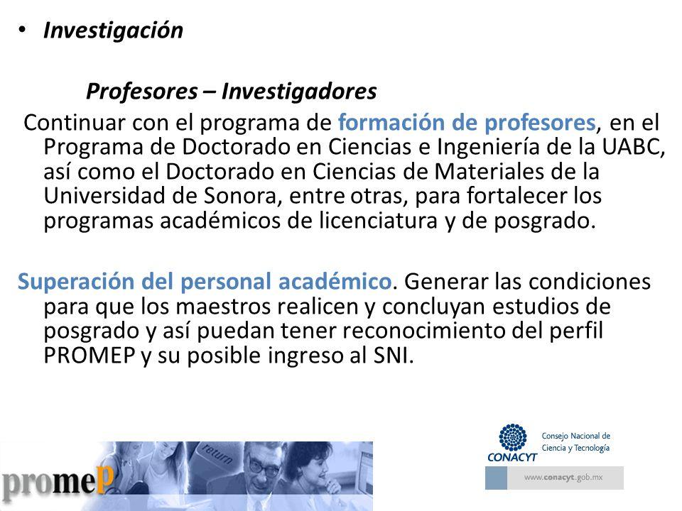 Investigación Profesores – Investigadores.
