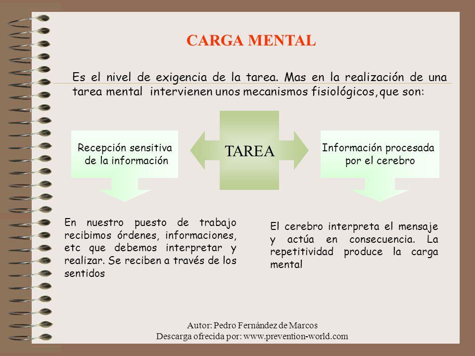 CARGA MENTAL Es el nivel de exigencia de la tarea. Mas en la realización de una tarea mental intervienen unos mecanismos fisiológicos, que son: