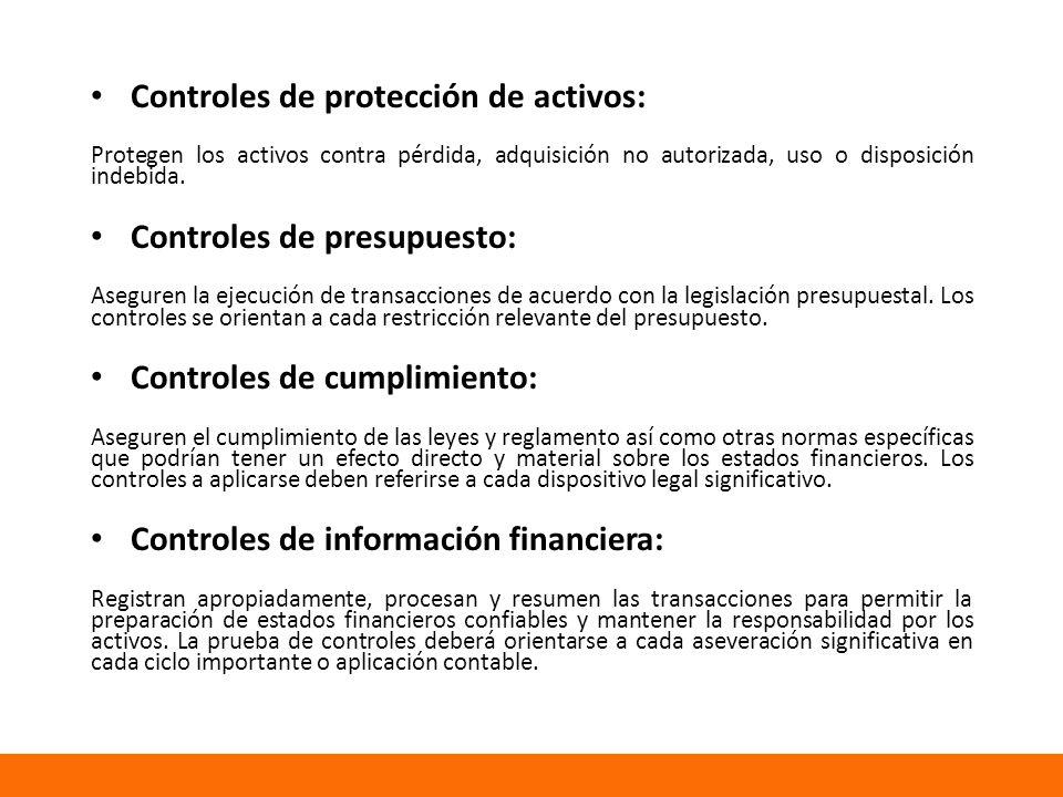 Controles de protección de activos: