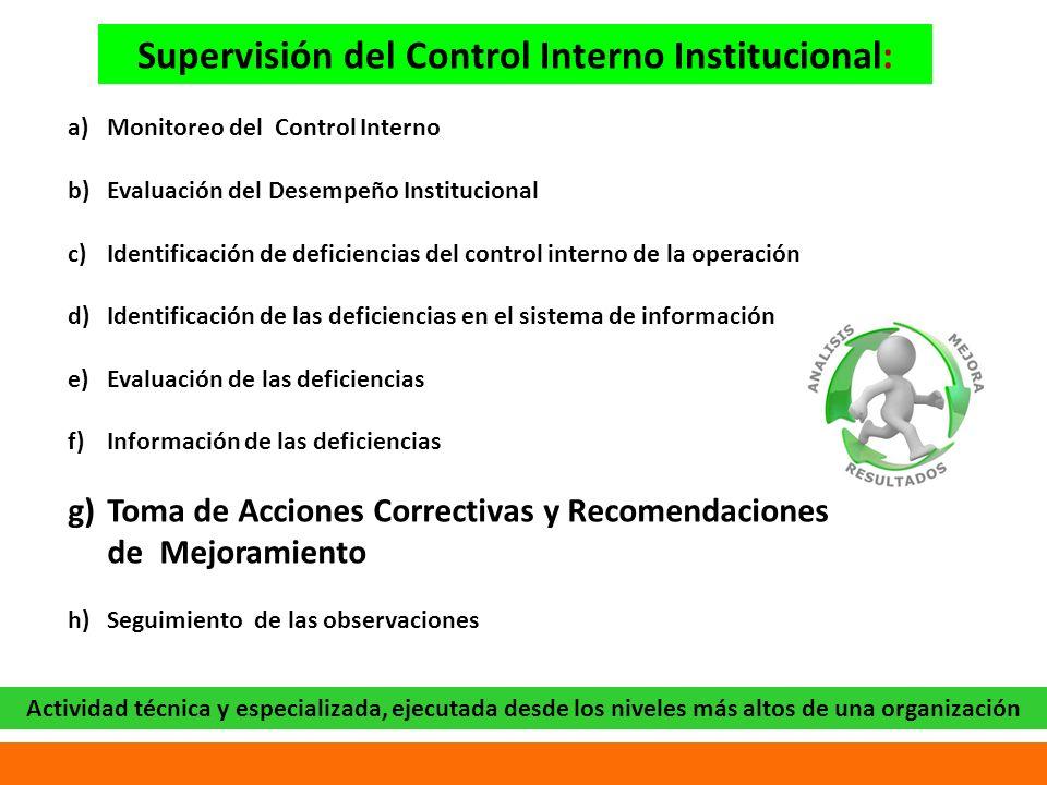 Supervisión del Control Interno Institucional: