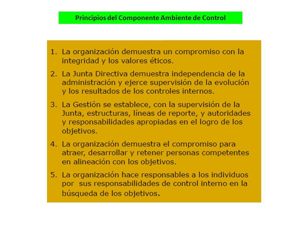 Principios del Componente Ambiente de Control