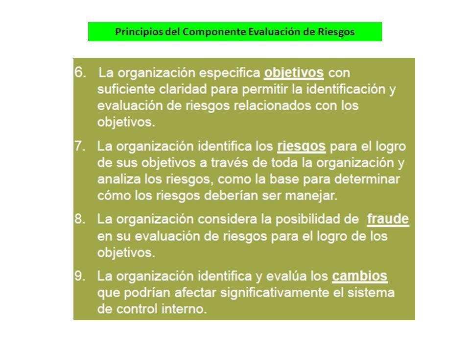 Principios del Componente Evaluación de Riesgos