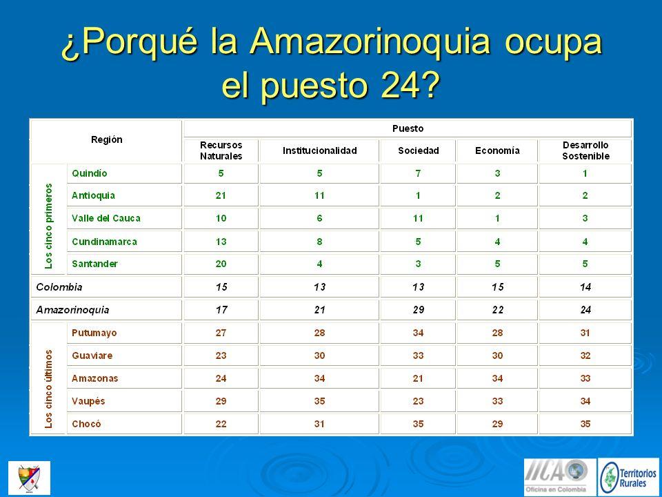 ¿Porqué la Amazorinoquia ocupa el puesto 24