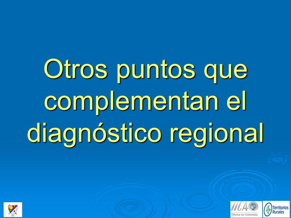 Otros puntos que complementan el diagnóstico regional