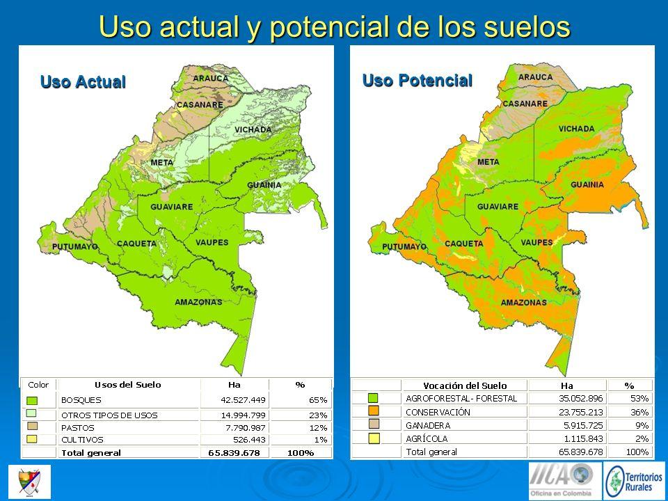 Uso actual y potencial de los suelos