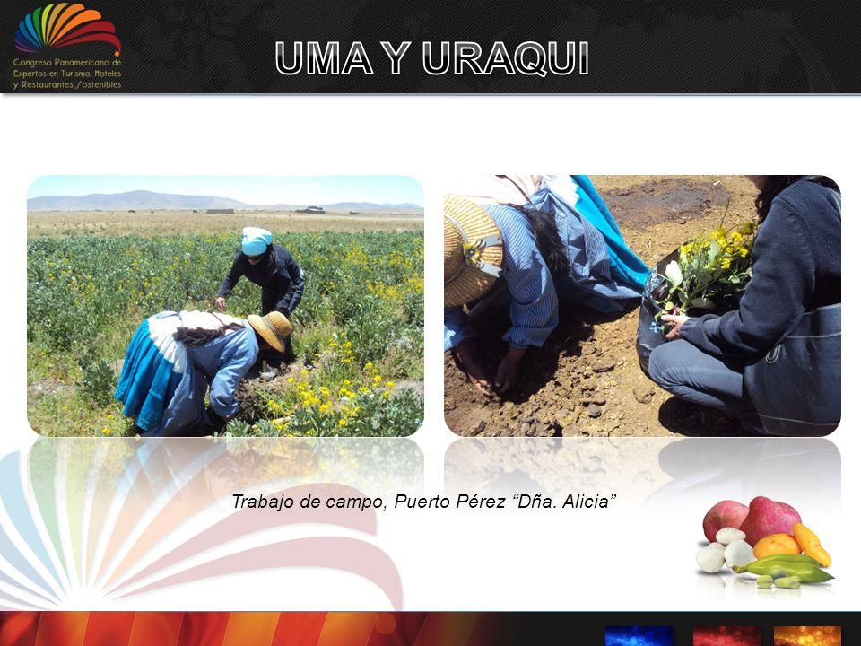 UMA Y URAQUI Trabajo de campo, Puerto Pérez Dña. Alicia