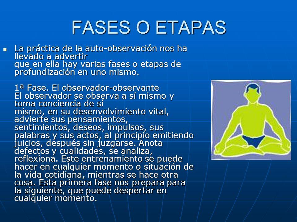 FASES O ETAPAS