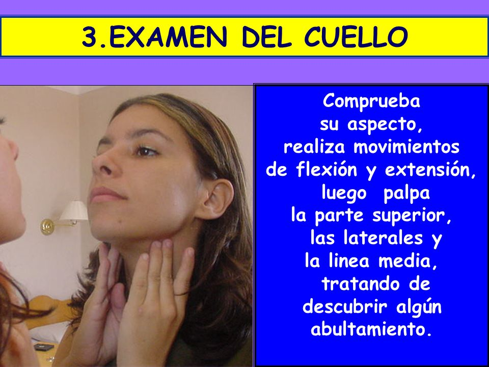 3.EXAMEN DEL CUELLO Comprueba su aspecto, realiza movimientos