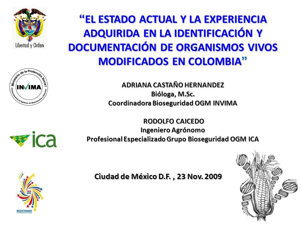 EL ESTADO ACTUAL Y LA EXPERIENCIA ADQUIRIDA EN LA IDENTIFICACIÓN Y DOCUMENTACIÓN DE ORGANISMOS VIVOS MODIFICADOS EN COLOMBIA