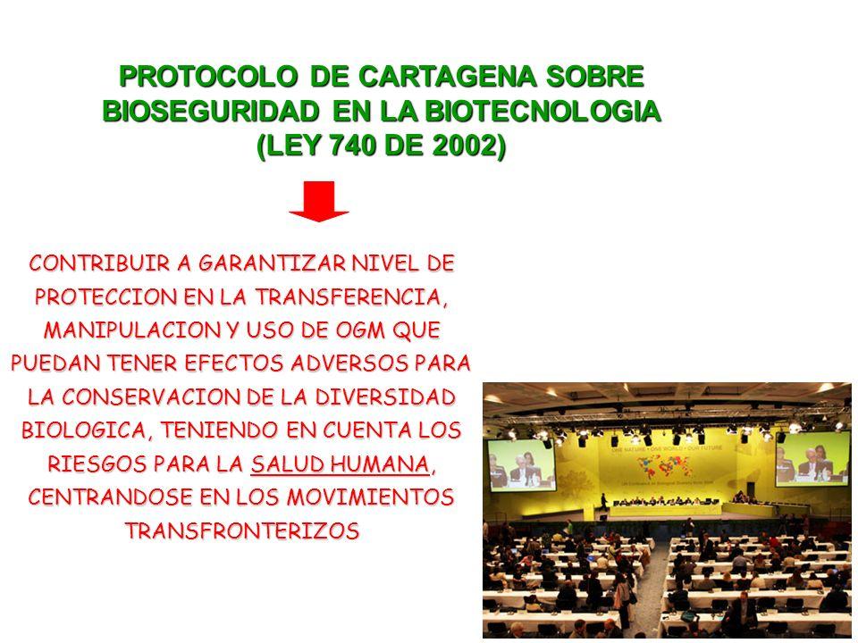 PROTOCOLO DE CARTAGENA SOBRE BIOSEGURIDAD EN LA BIOTECNOLOGIA