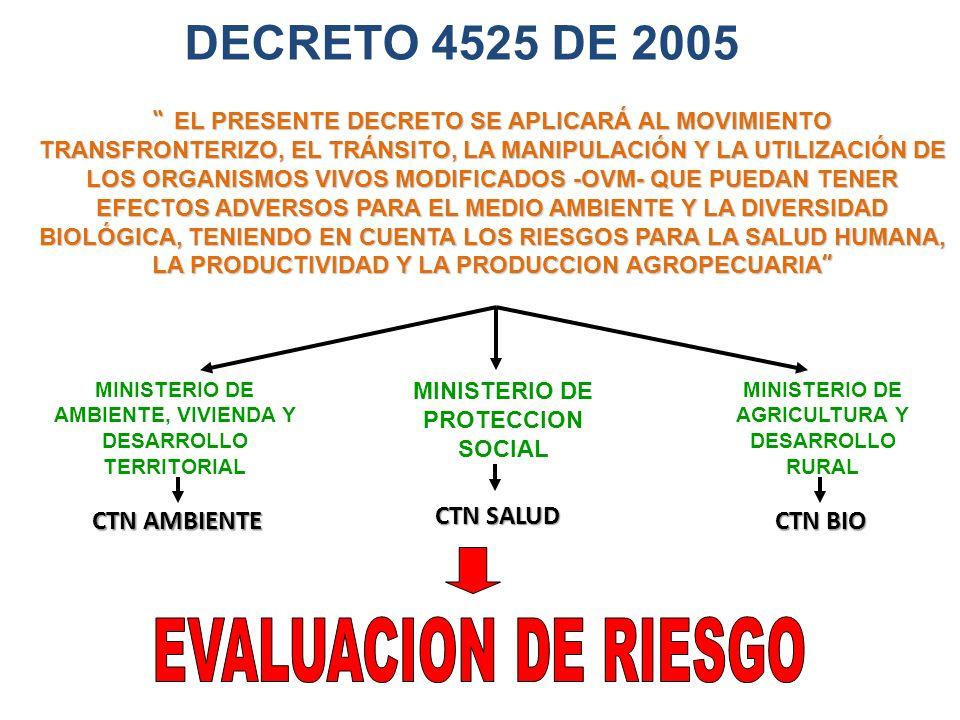 DECRETO 4525 DE 2005 EVALUACION DE RIESGO CTN AMBIENTE CTN SALUD