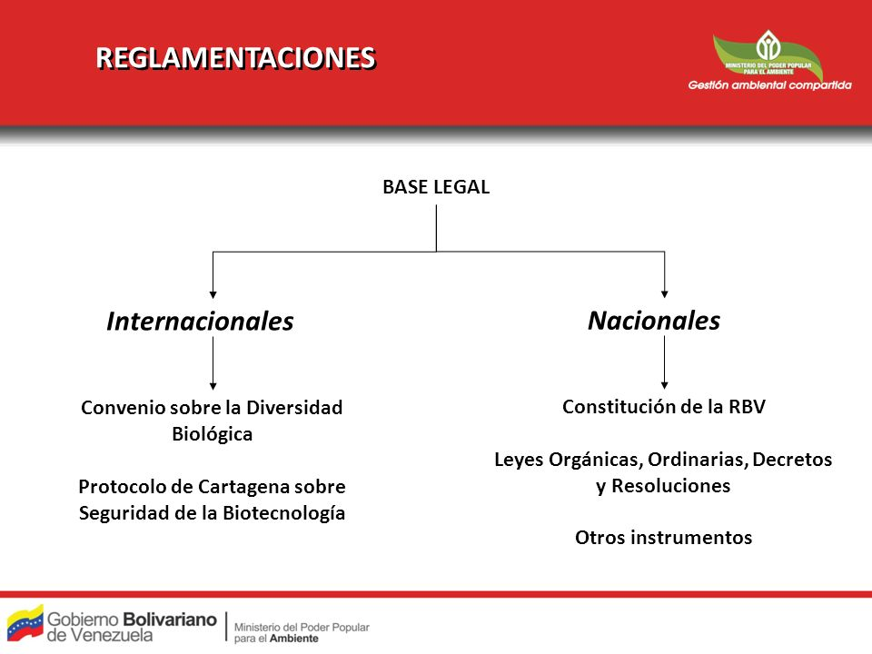 REGLAMENTACIONES Internacionales Nacionales BASE LEGAL