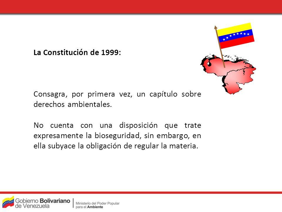 La Constitución de 1999: Consagra, por primera vez, un capítulo sobre derechos ambientales.