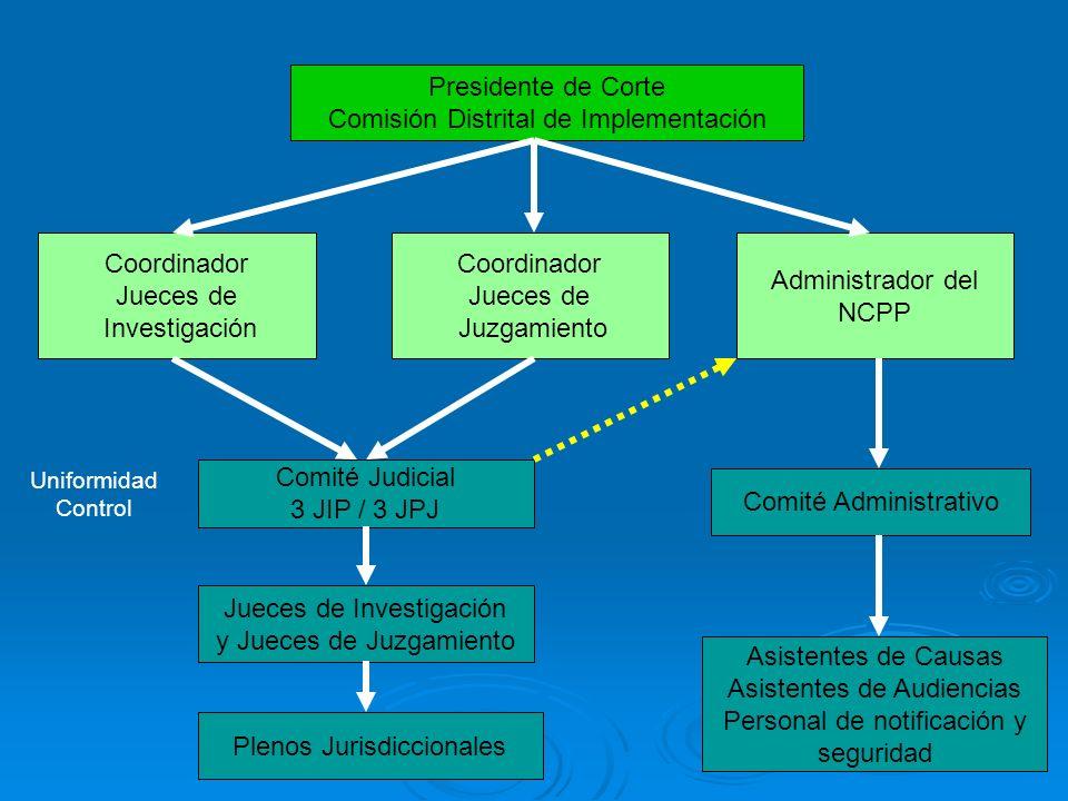 Comisión Distrital de Implementación