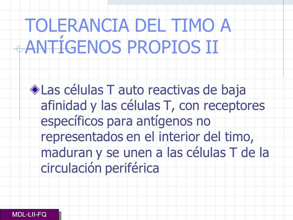 TOLERANCIA DEL TIMO A ANTÍGENOS PROPIOS II