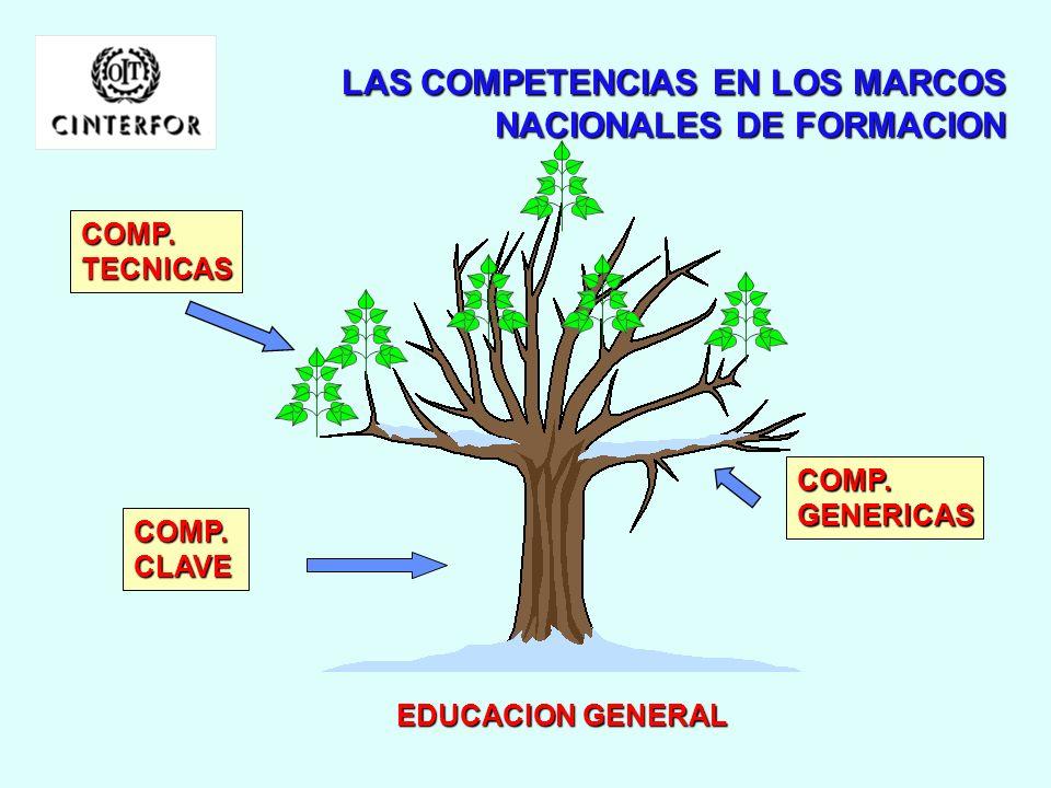 LAS COMPETENCIAS EN LOS MARCOS NACIONALES DE FORMACION