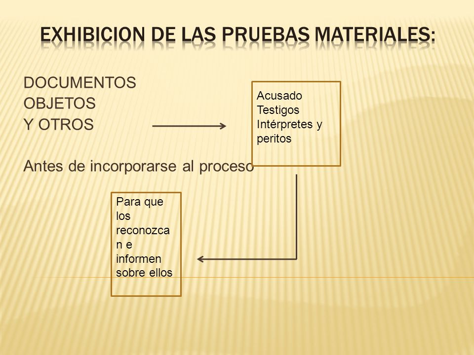 EXHIBICION DE LAS PRUEBAS MATERIALES: