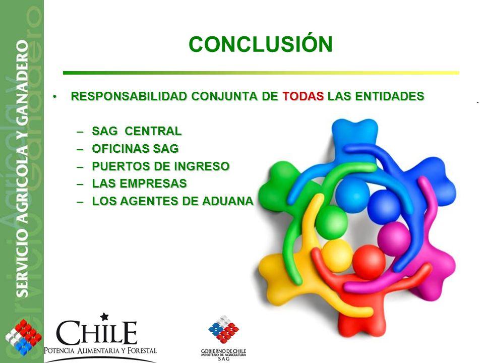 CONCLUSIÓN RESPONSABILIDAD CONJUNTA DE TODAS LAS ENTIDADES SAG CENTRAL