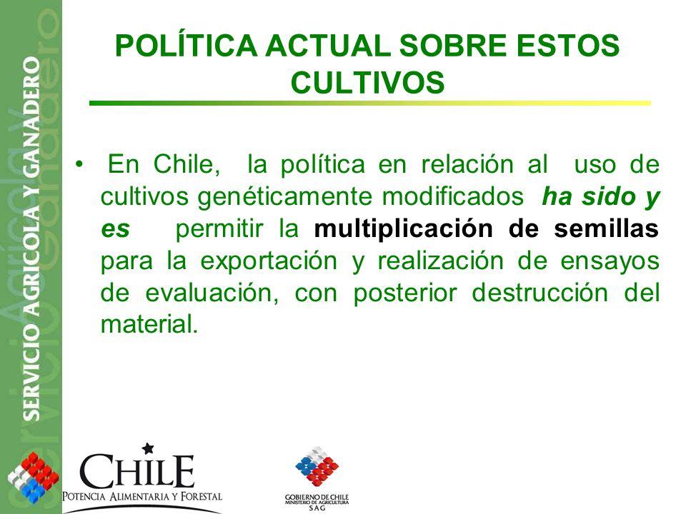POLÍTICA ACTUAL SOBRE ESTOS CULTIVOS