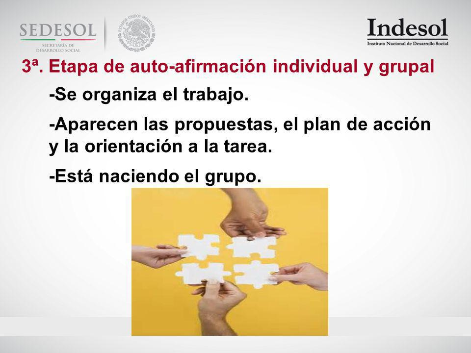 3ª. Etapa de auto-afirmación individual y grupal