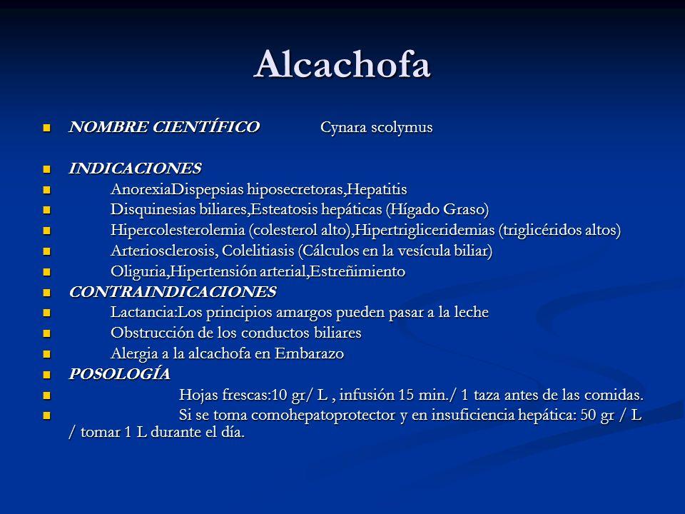 Alcachofa NOMBRE CIENTÍFICO Cynara scolymus INDICACIONES