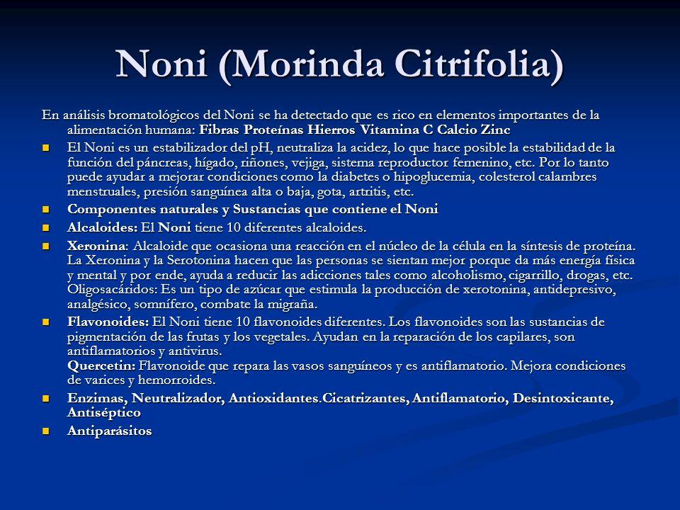 Noni (Morinda Citrifolia)