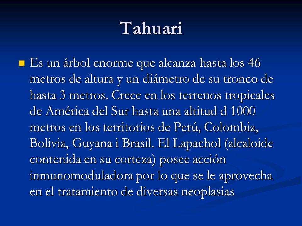 Tahuari