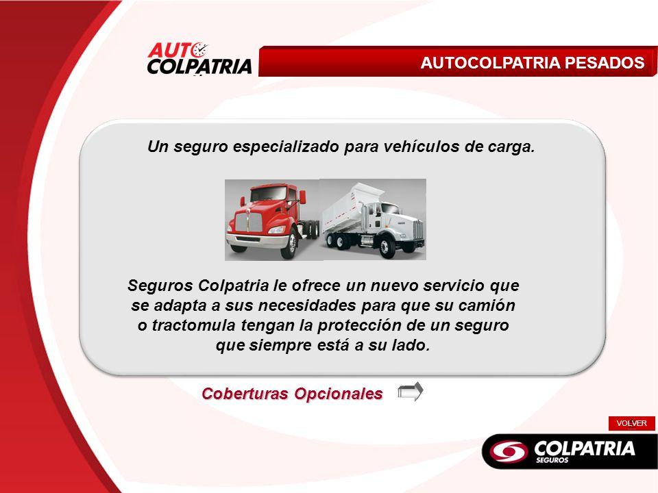 Un seguro especializado para vehículos de carga.