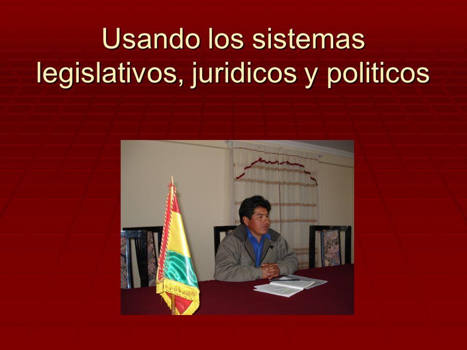 Usando los sistemas legislativos, juridicos y politicos